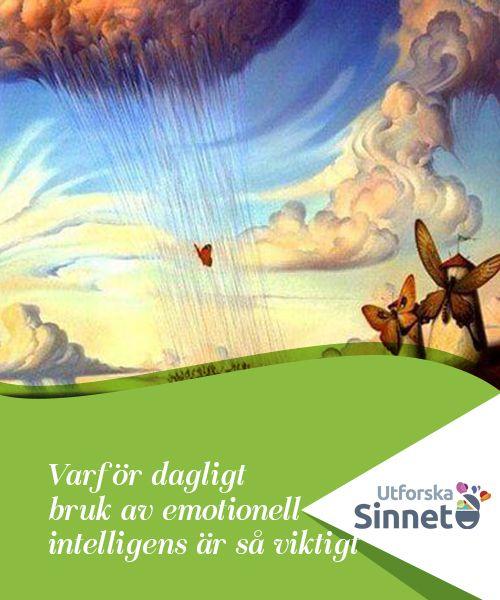 Varför dagligt bruk av emotionell intelligens är så viktigt   Vi pratar om att uppnå en emotionell medvetenhet som du kan använda för att bygga mer stabila relationer och utöva dagligt bruk av emotionell intelligens.