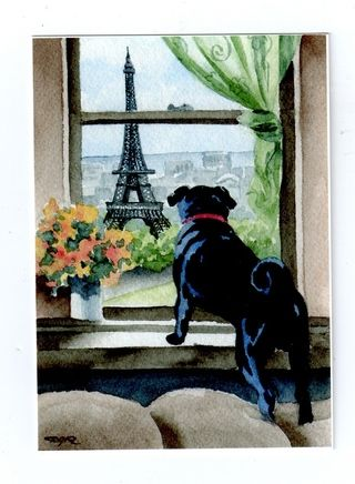french pug