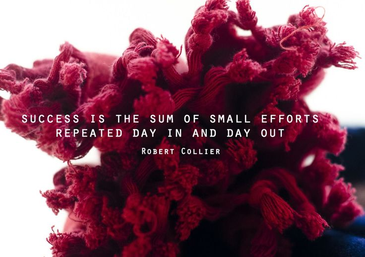 Success is the sum of small efforts repeated day in and day out. – Robert Collier thedailyquotes.com