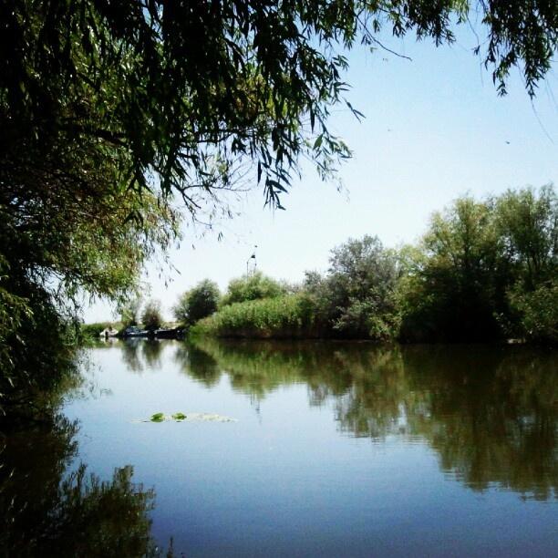 Danube Delta, Tulcea, Romania