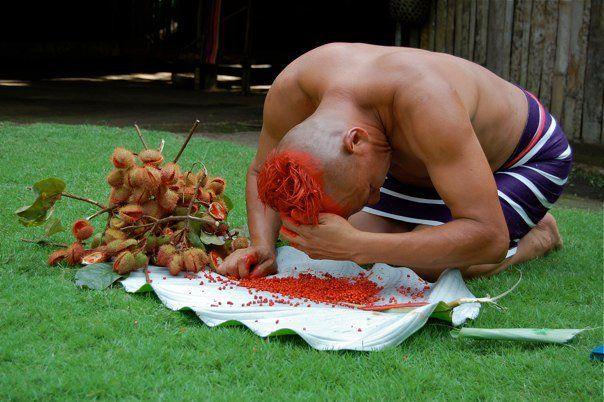 Etnia Tsachila, Santo Domingo, Ecuador Hombre tiñendo su pelo con achiote