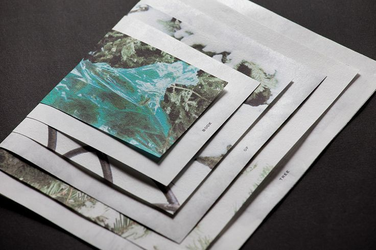 BOOK OF TREE: This book binding design is from the concept of annual tree rings, different size of papers and images