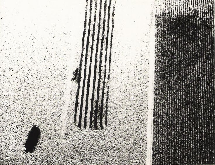 mario giacomelli, field patterns look great from above, maybe try footprints in the snow