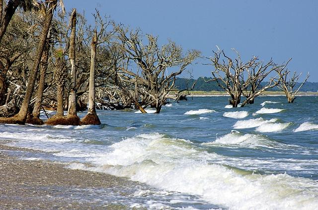 Botany Bay on Edisto Island, SC