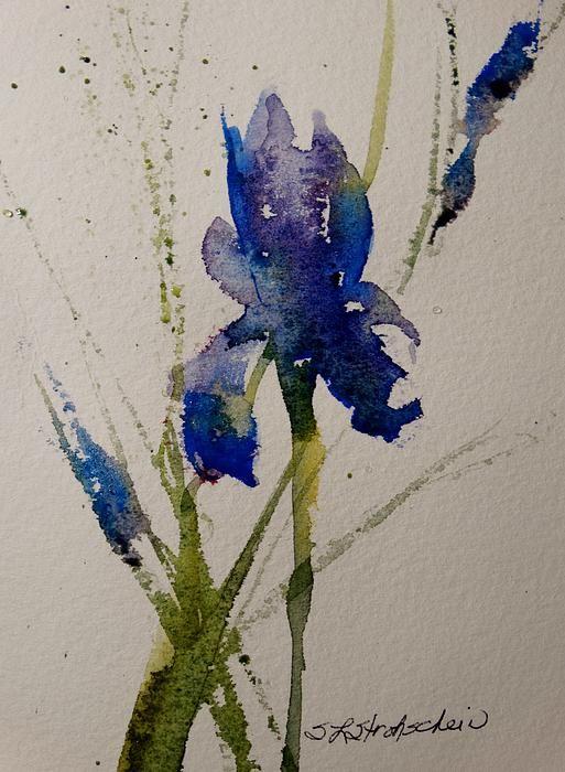 """Iris""  10x7 watercolor,  Sandra L Strohschein,  SOLD,  prints available through fine art America."