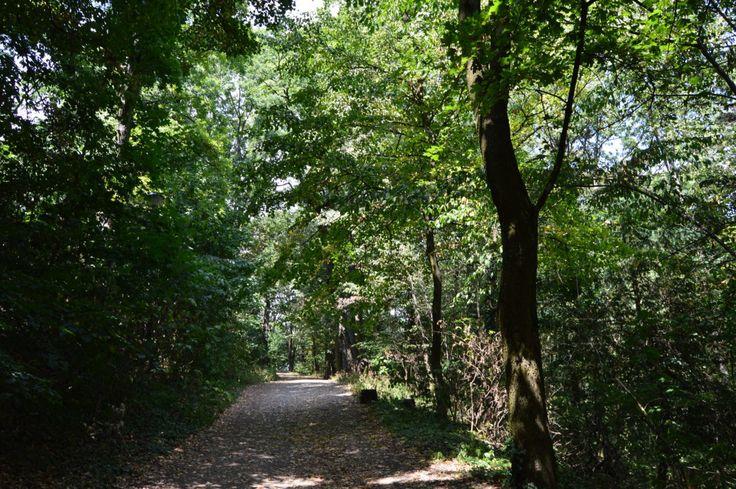The walk to Smolenicky Hrad