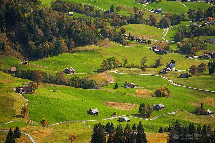 Swiss green fields.