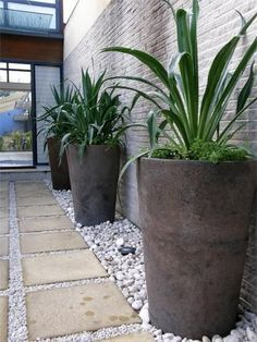 planting on narrow strip with high containers for unobstructive walkway
