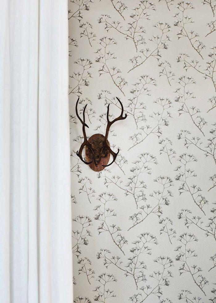 Wallpaper from Jocelyn Warner, color Samite