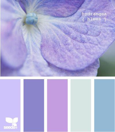 Hydrangea Blues - http://design-seeds.com/index.php/home/entry/hydrangea-blues