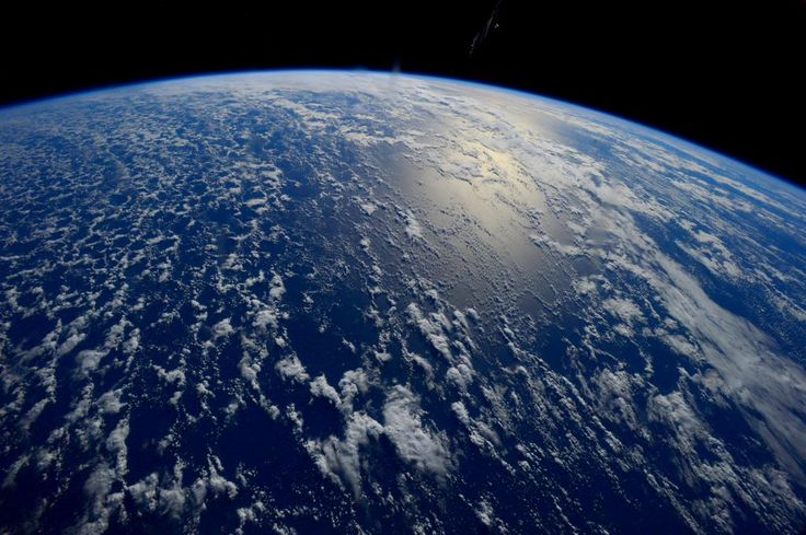 Healthy oceans, healthy planet! Let's take care of spaceship Earth by decreasing plastic pollution. #WorldOceansDay
