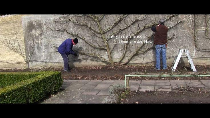 | Berlinale | Programm | Programm - Portret van een tuin | Portrait of a Garden