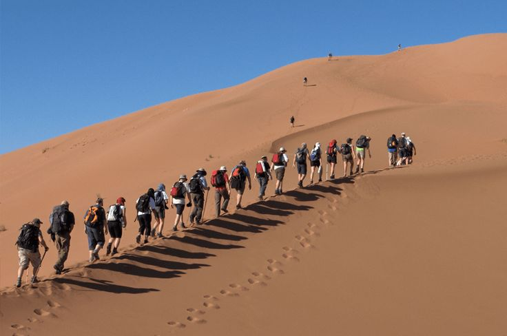 One of our exciting new tailor-made holidays features #MoroccoCamelTrekking, this truly unique experience includes a night spent in a Desert Camp the stars if you prefer.