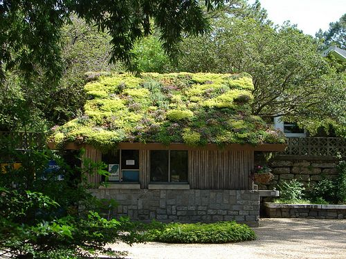 Green Roof At Norfolk Botanical Garden, Virginia. Image Credit: Creative  Commons Photo By