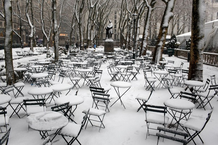 NYC. Frozen Bryant Park