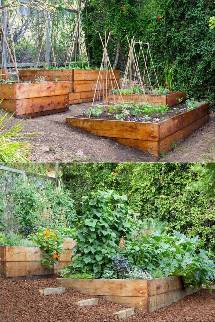 Www Helenshaw Co Garden Design Gardendesign Gardenideas Landscape Design Plans Modern Garden Design Garden Landscape Design