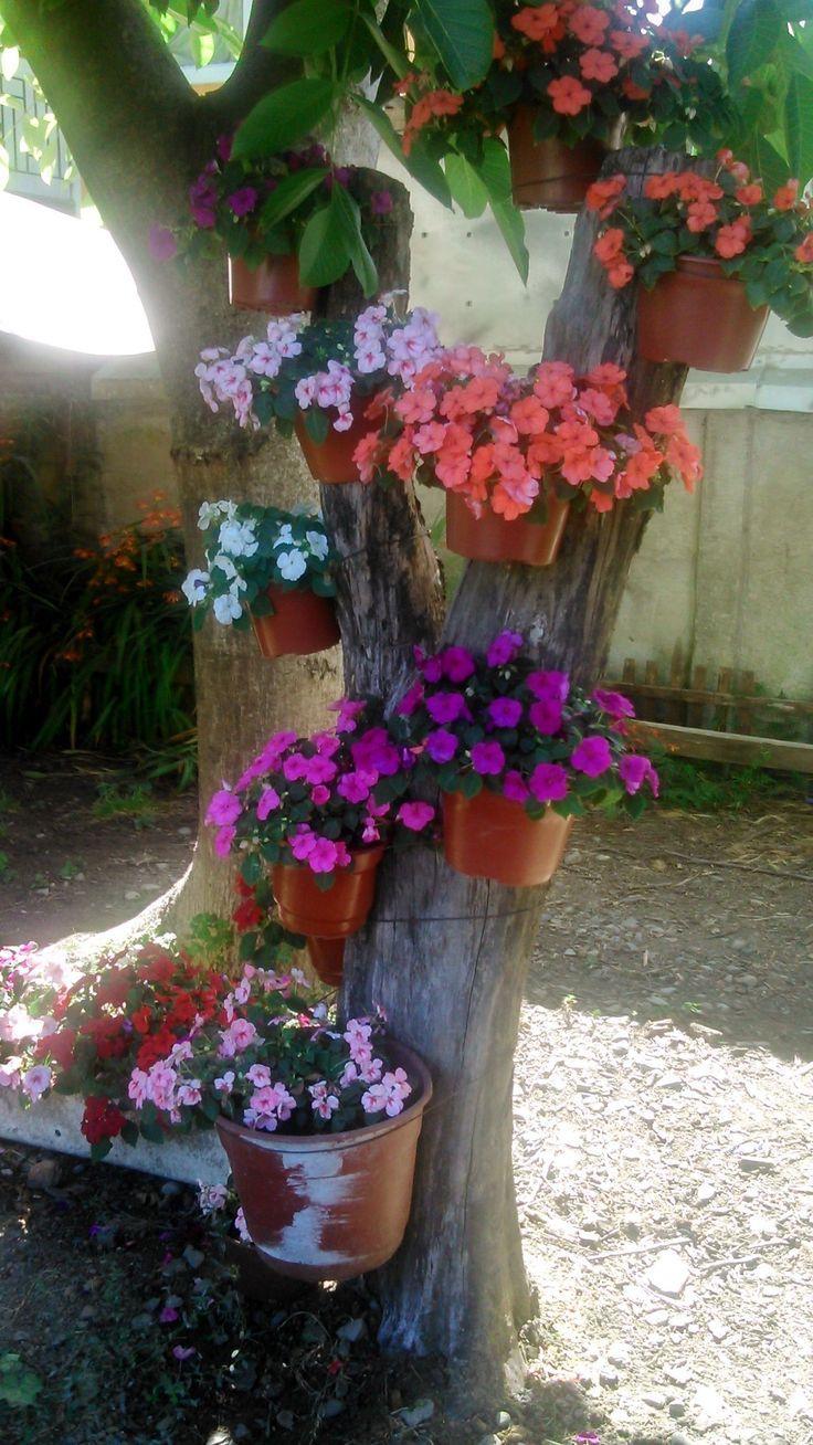 Schöner Garten voller Farbe! #gärten #blumen homechanneltv.com #flower gard – Beste Garten Dekoration