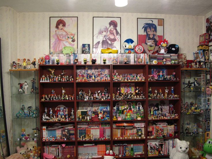 My goal is have a room filled with my anime collection