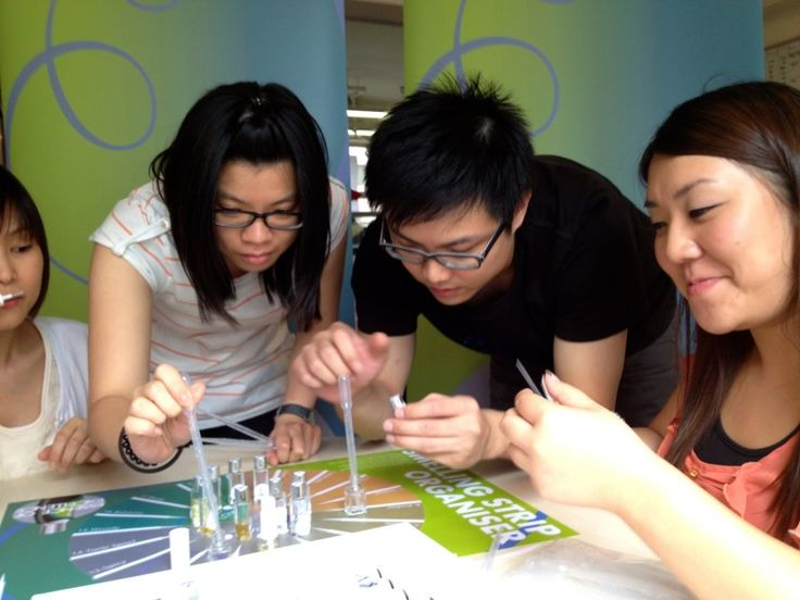 Essence of Excellence - Catalyst Teambuilding Australia