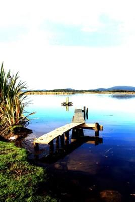 A photo submitted to the contest by Tina Heads. It shows untouched beauty out the back of Waihola.