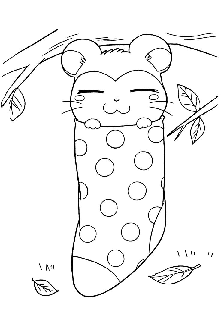It is a graphic of Sly hamtaro coloring pages