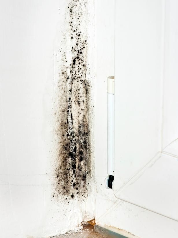Hgtv Helps You Keep Mold At Bay By Sharing The Common Causes Of On Walls