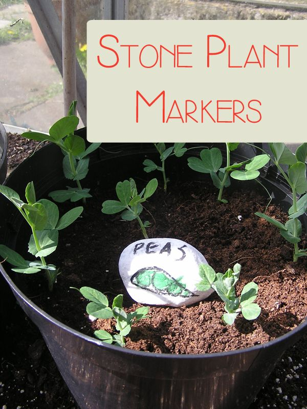 DIY Stone Plant Markers to make with the kids perfect for seeds, pots and beds #plantaseed