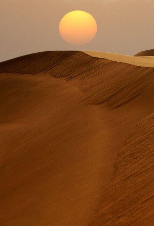 #desert #sunset