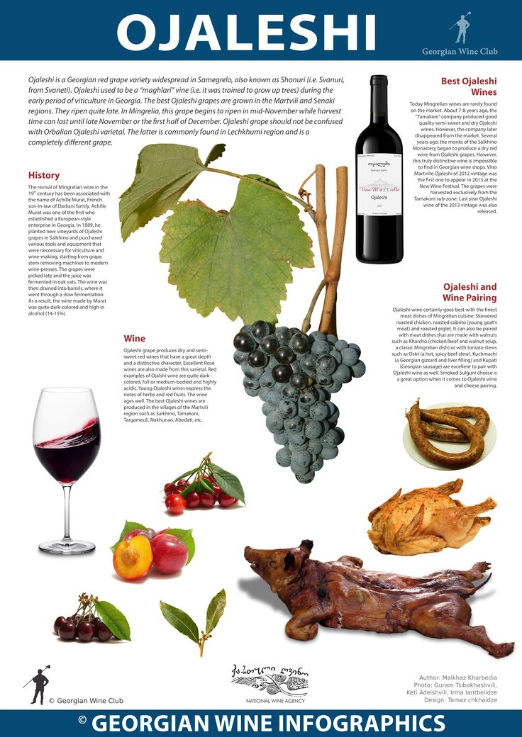 Ojaleshi - Georgian Wine Infographics (32) | Marani