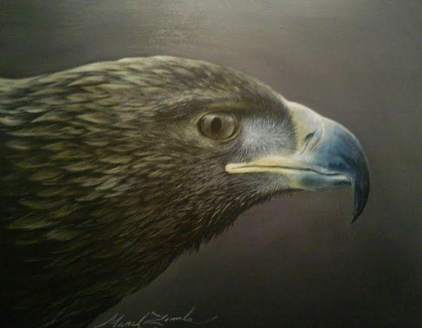 Portrét orla akryl,plátno