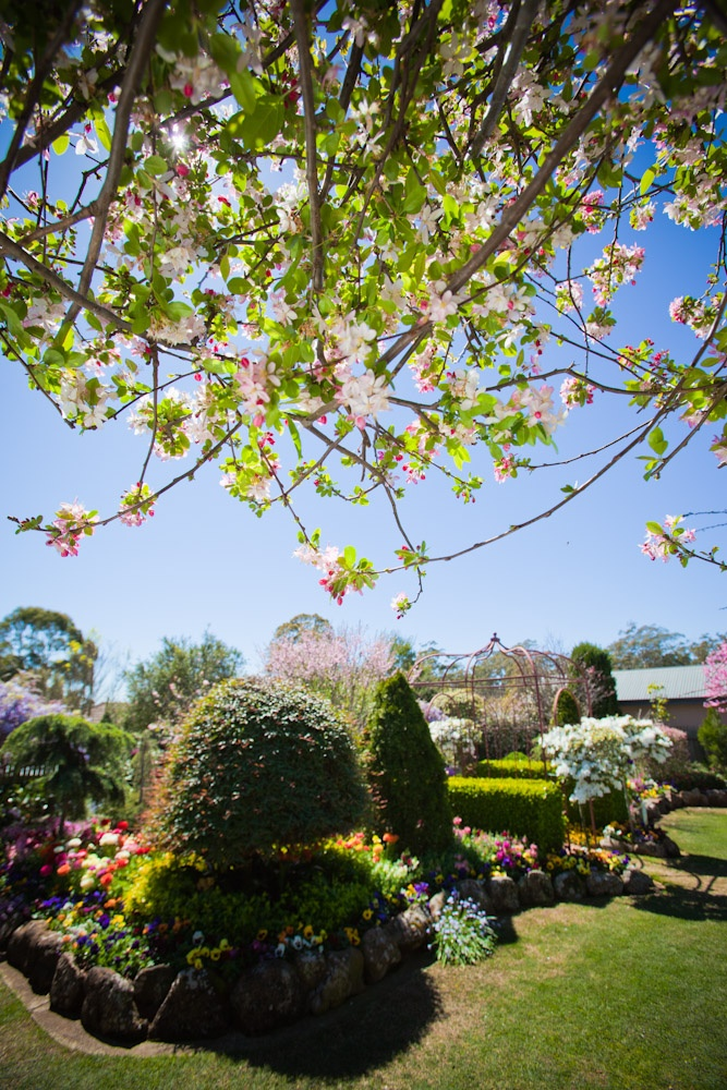 It's a beautiful day!  Celebrate Spring at Toowoomba's Carnival of Flowers.