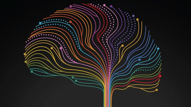 A Neuroscientist Says It's Our Stories That Make Sense of Our World