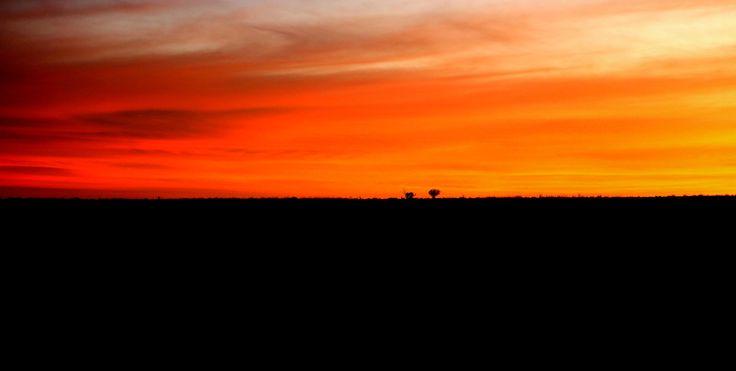 Sunset on Cordillo Downs (3)