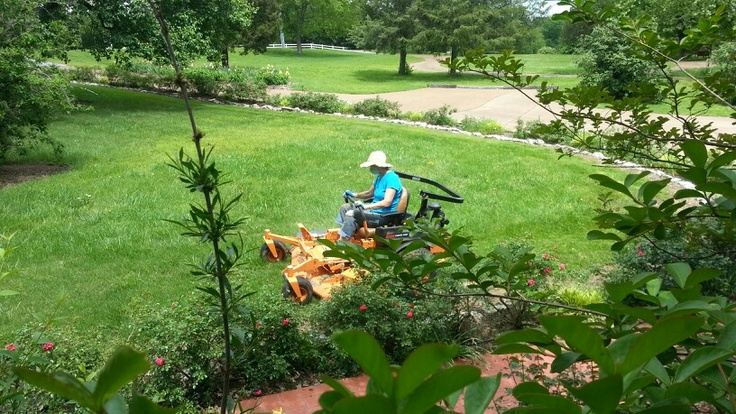 Quotes About Our Backyard : Why our yard looks like it does  Tori on our new mower