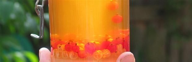 Prøv at lave kirsebær-, hindbær- solbær eller stikkelsbær eddike.(Sure syltekirsebær er bedst.Knus dem let i en morter, det giver en skøn mandelsmag til eddiken.)Andre bær kommes hele i flasken og blade fra busken eller træet i.Specielt solbærblade giver en helt fantastisk smag.Fyld en bredmundet flaske halvt op med meget modne bær, lidt sukker og top op med æbleeddike eller anden kvalitets eddike.Lad flasken stå i en solbeskinnet vindueskarm i en måned, si eddiken fra, gem den køligt og…