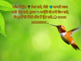 Best Whatsapp Status Quotes in punjabi language,Good morning status in punjabi,Good Morning SMS in English, Romantic Good Morning Messages for Her.