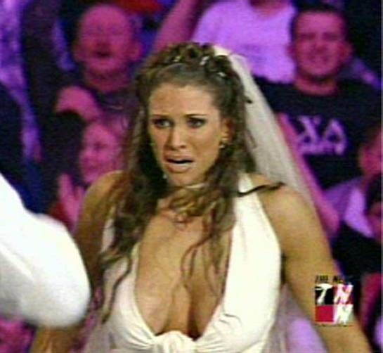 Stephanie Mcmahon Hottest Cleavage Collections On Available On Bikini Galaxy Hip Hip Hurray...