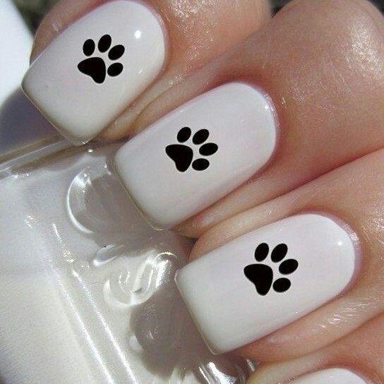 Uñas de huellas de perros