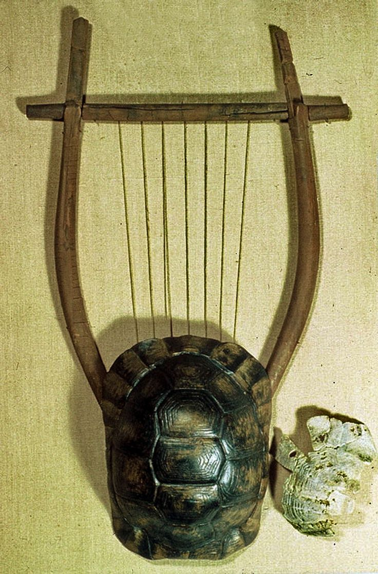 Lyre restored from remains.Have been found in Athens Greece, and it'sprobably 5th or 4th century BC. The lyre was a stringed instrument plucked with the fingers or a plectrum. The tortoise shell served as a sound box. The strings stretched over a bridge and were held in tension by a cross-piece supported on two projecting arms. The British Museum