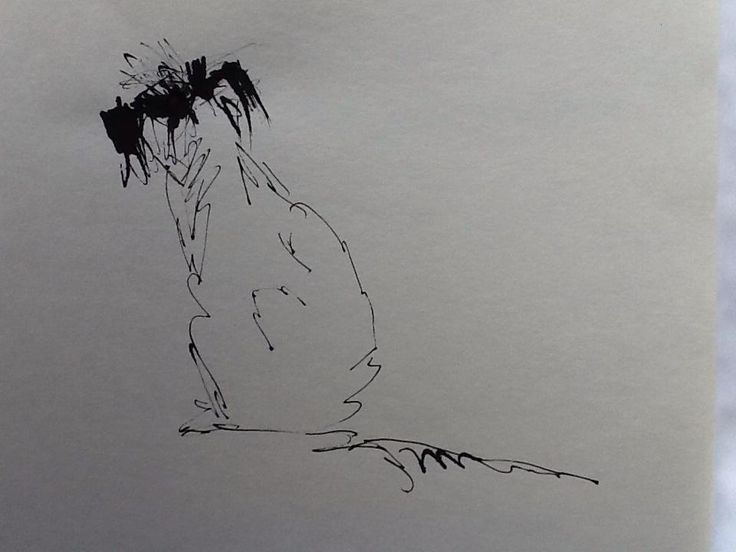 @salmuirAdogaday Day10 of #DrawingAugust Here's a mongrel type dog in ink