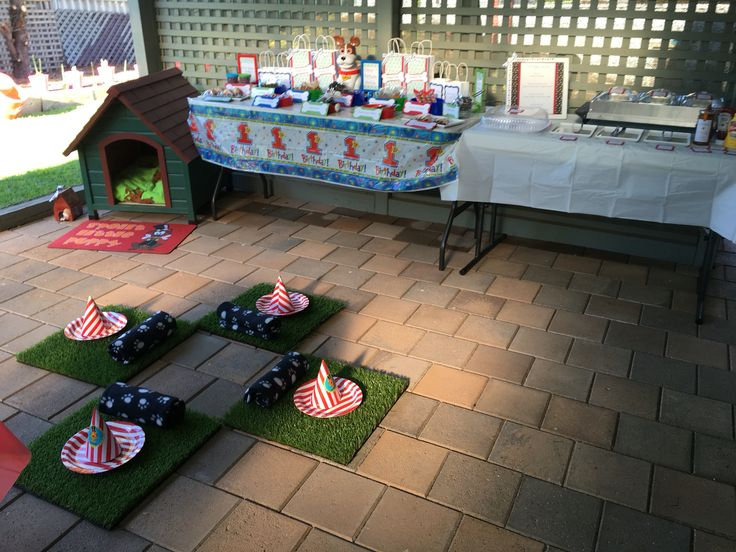 All set up and ready for the pooches!