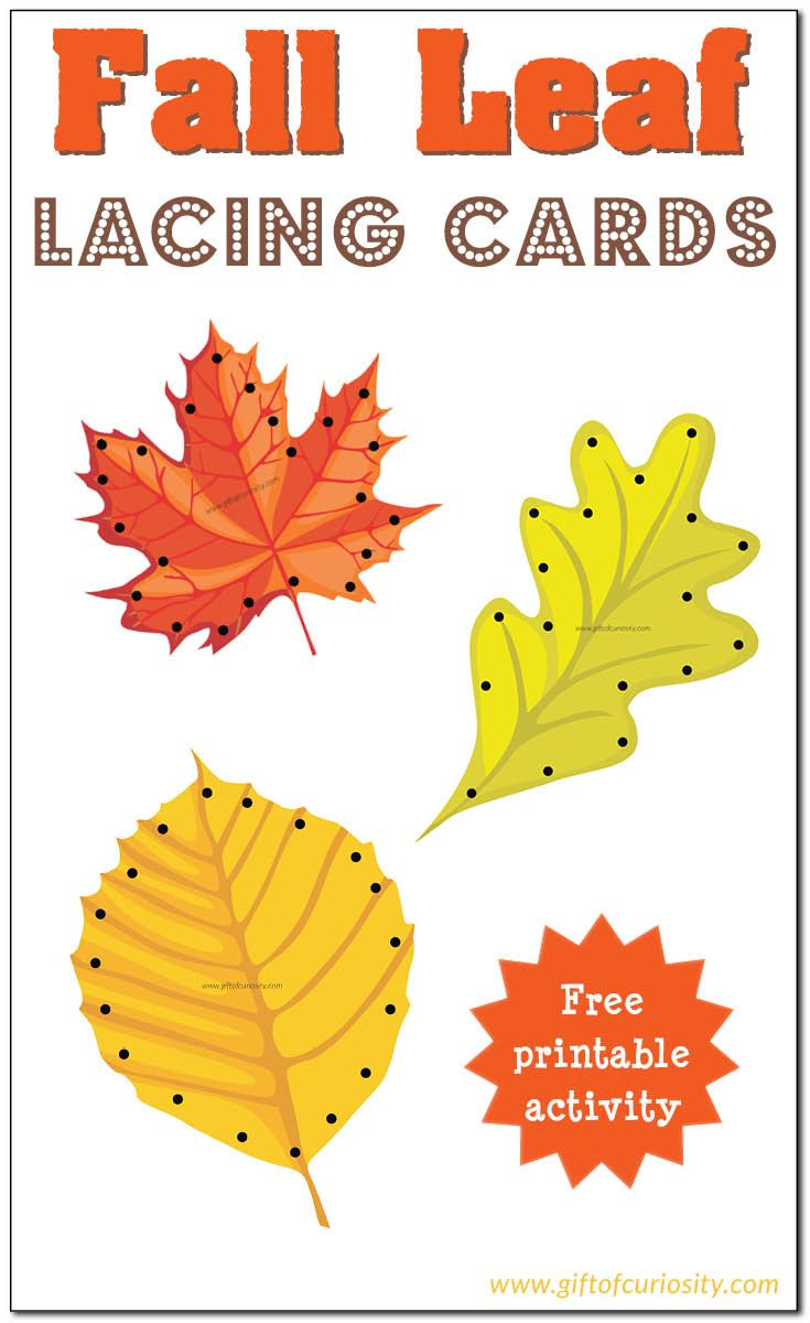 Free Fall Leaf Lacing Cards for kids to enjoy the colors of fall while developing their fine motor skills. || Gift of Curiosity
