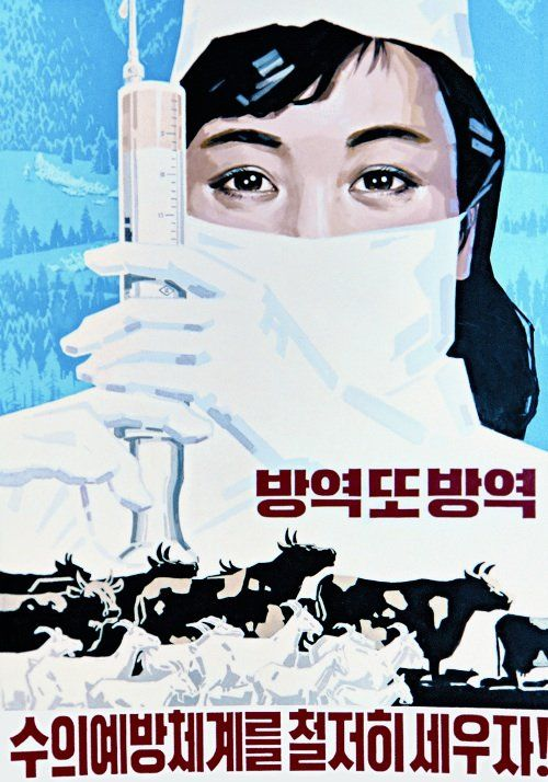 "North Korean Poster:  ""Prevention and more prevention. Let's fully establish a veterinary system for the prevention of epidemics!"""
