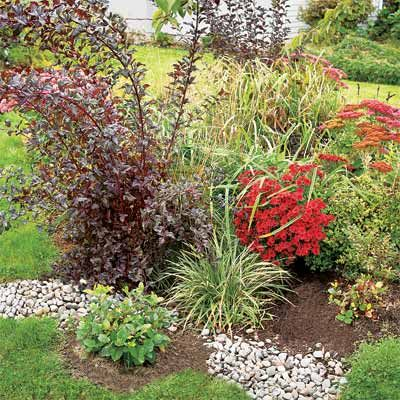 72 best Rain Garden ideas images on Pinterest Rain garden