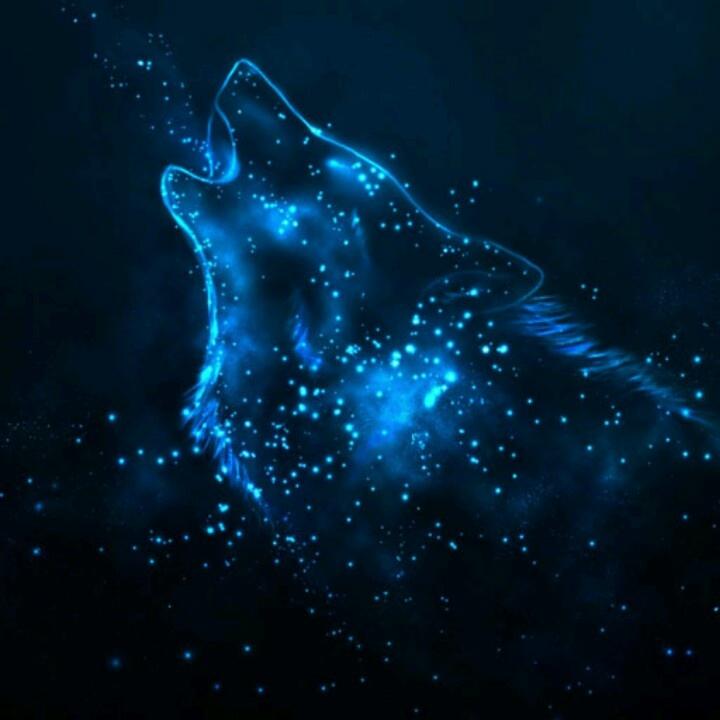 blue star sirius the wolf - photo #8