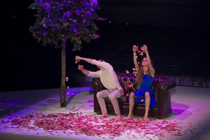 Le fasi dell' amore rappresentate dalle quattro stagioni ... coreografie #Amici14