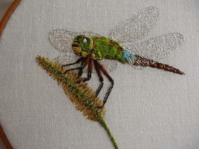 Hand embroidered dragonfly and foxtail grass ギンヤンマの刺繍 Anaxparthenope