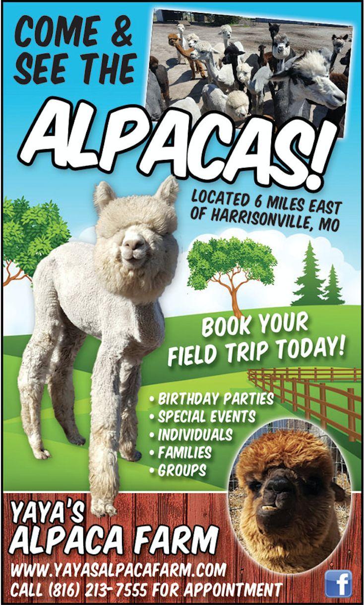 13+ Kid friendly animal farms near me ideas in 2021