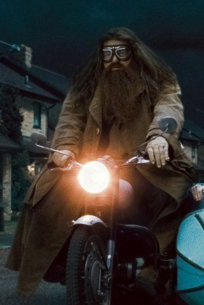 Harry Potter's Rubeus Hagrid