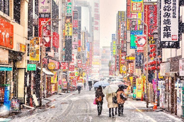 Snow falling on Kabukicho.